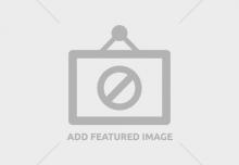 Folie DMD - clasa F 0.21x1000mm (1kg=7m)